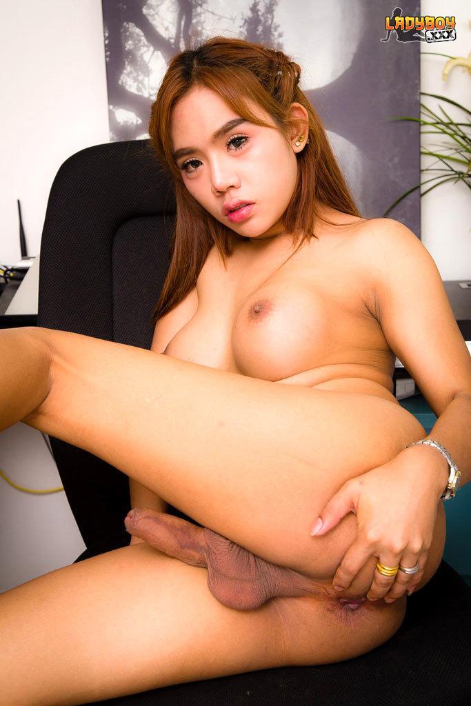 Fantastic T-Girl Barebacked In Both Holes