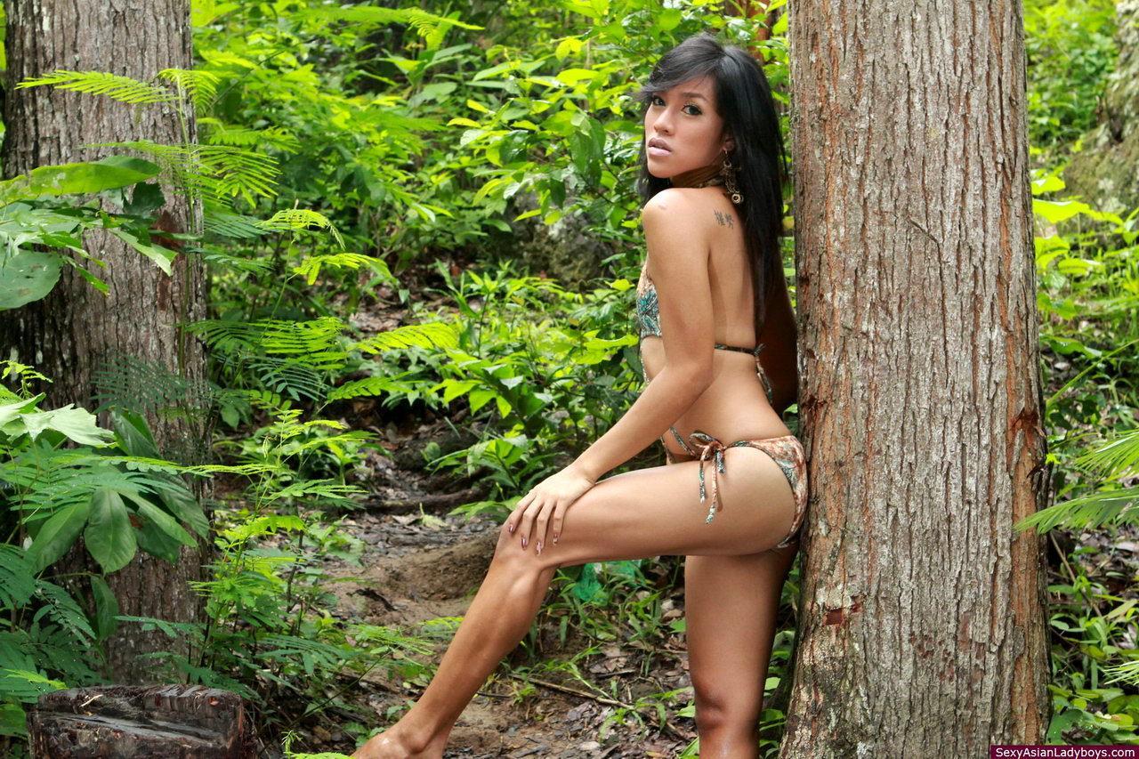 Flirtatious Asian Ladyboy Pancake Toying Her Amazing Butt Till She Cums