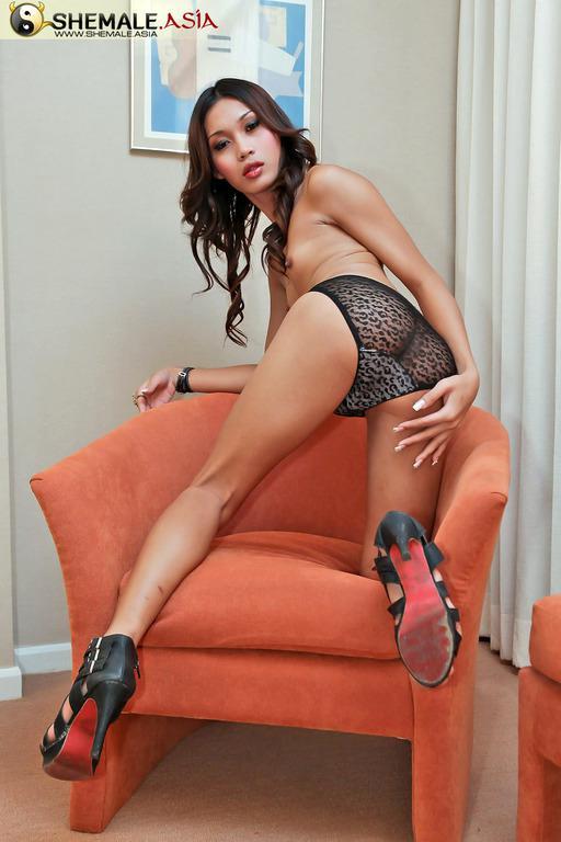 Getting A Perfect DeepThroat Blow Job From A Titillating Thai Ladyboy Slut