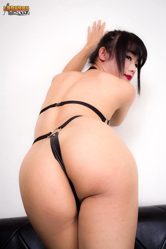 Hot Tgirl Stroke's Cock