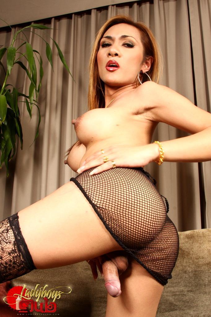 Kissable Thai Ladyboy Stripping