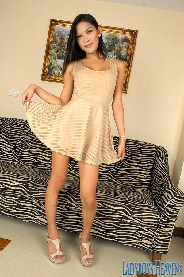 Naughty Hot T-Girl