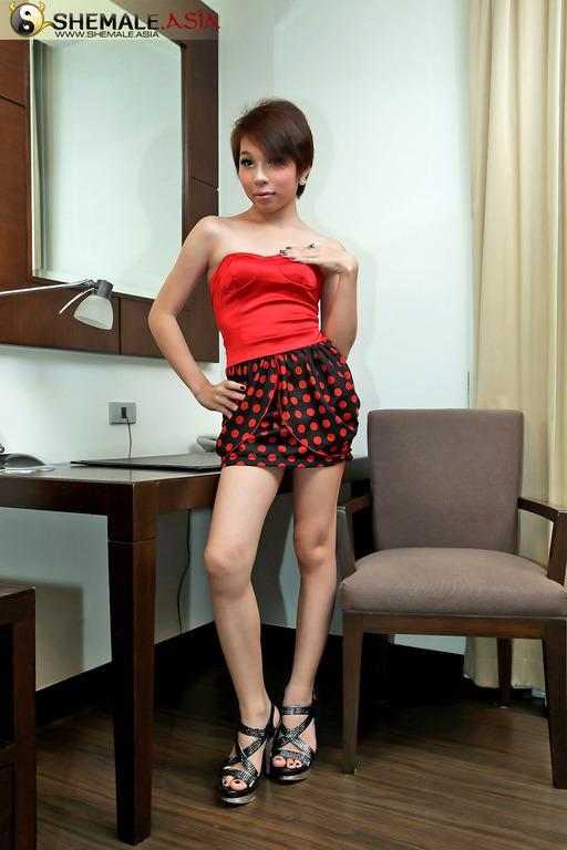 Seductive Thai T-Girl Shows Off