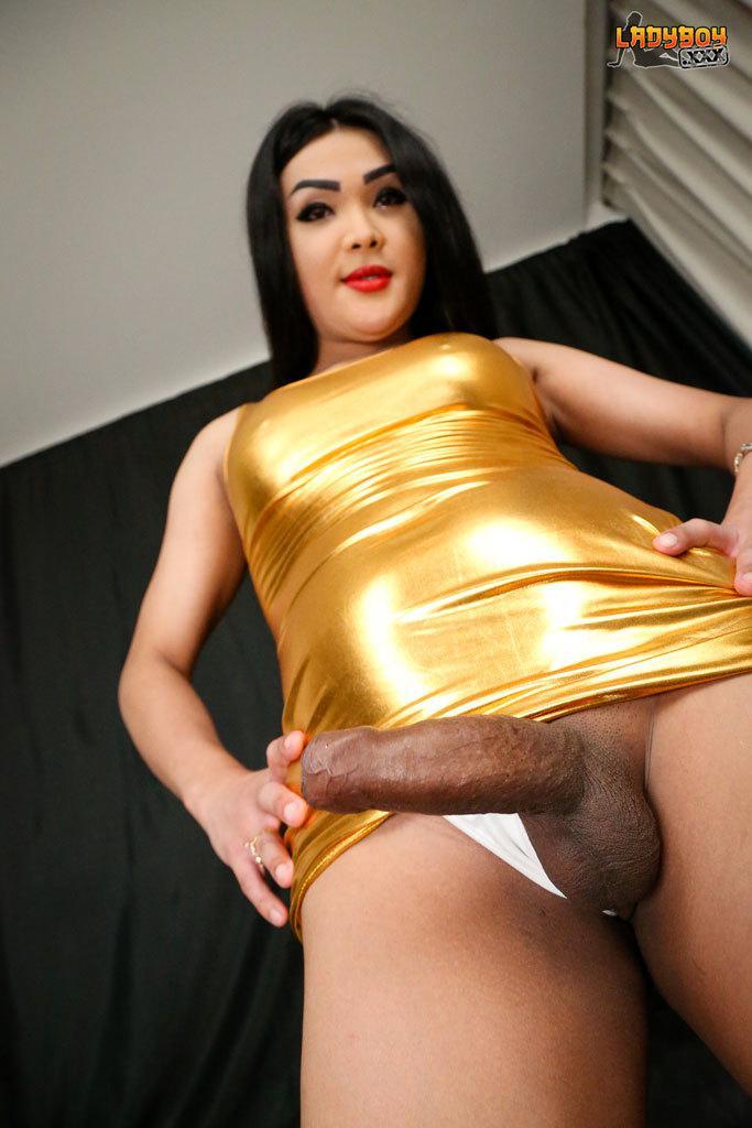 Shemale Hot No Condom Fucking