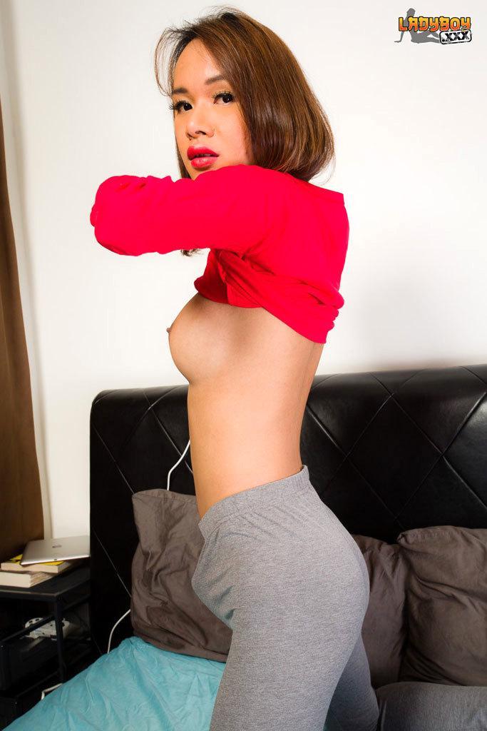 Stunning Tgirl Girl In Sexy Lingerie