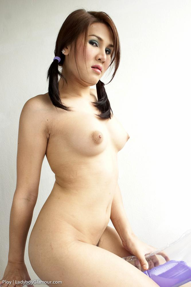 Sweet Boobs T-Girl Gets Her Ass Banged