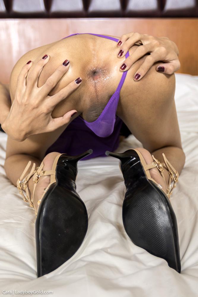 T-Girl Hot Bareback Fucking