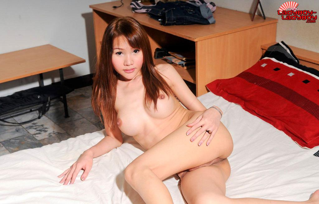 Thai Ladyboy Getting Cock Sucked