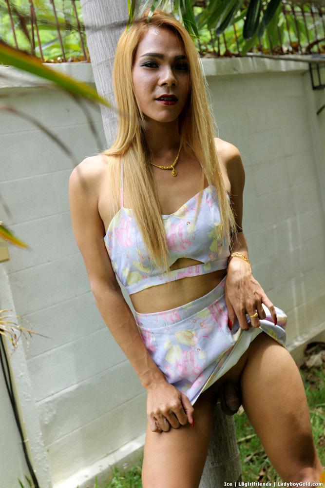Thai T-Girl Hardcore Sex
