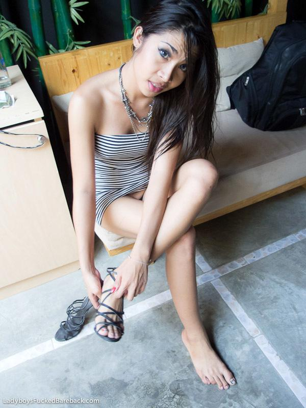 This Fantastic Looking Ladyboy With A Sweet Hard Cock
